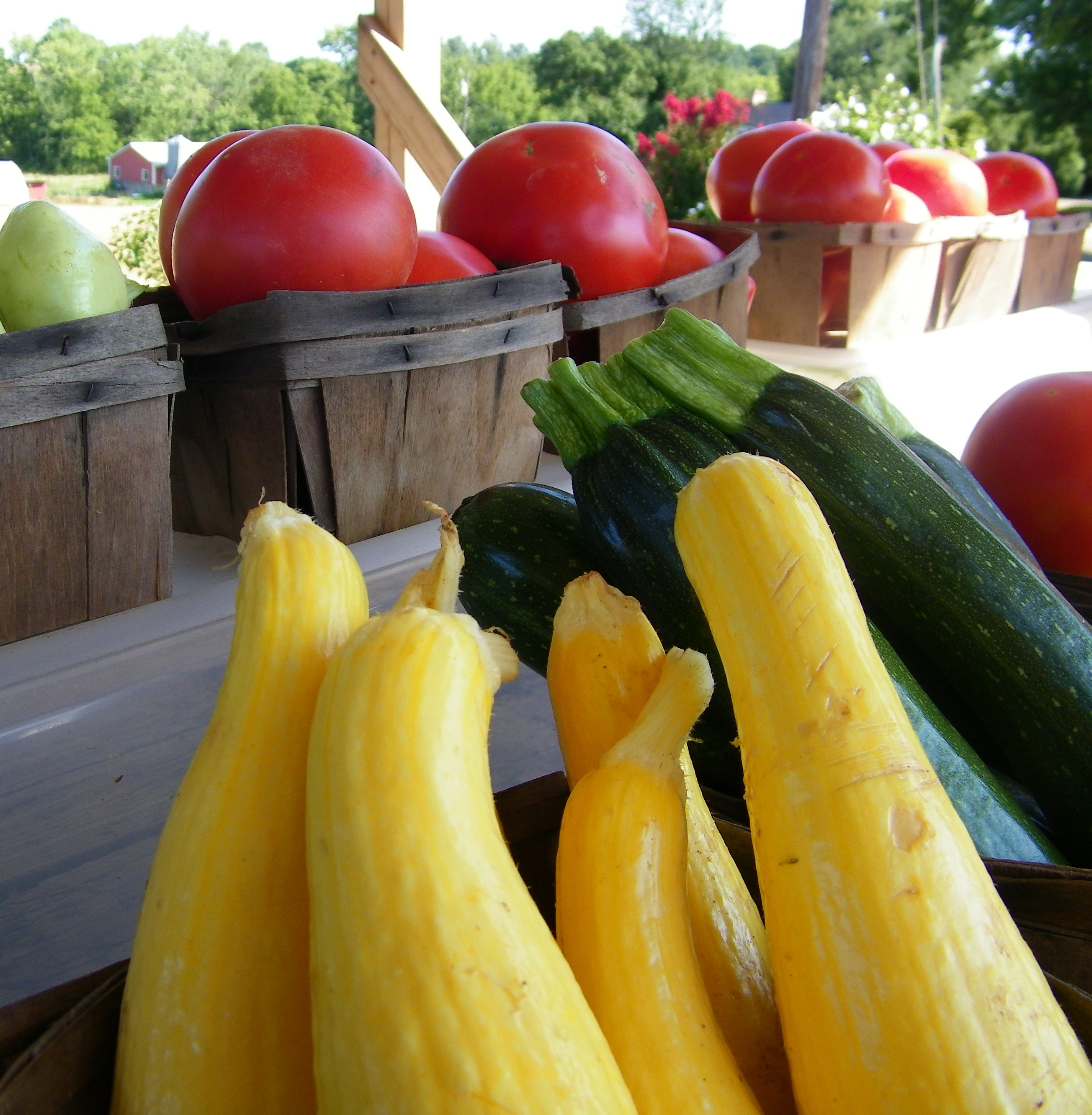 Vegetables, farmers market, organic food, agriculture farms, fruit and vegetable, farm markets, food distributors, food suppliers, wholesale food, farm produce, produce vegetables