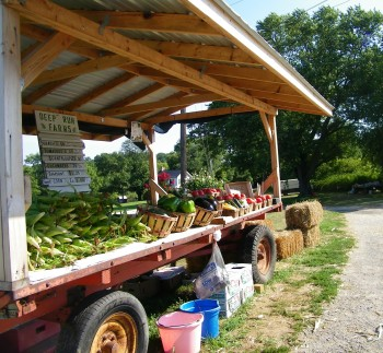 farms foods, produce markets, box of vegetables, community farming, vegetable delivery, local farms, eat local, wholesale food distributors, produce wholesale