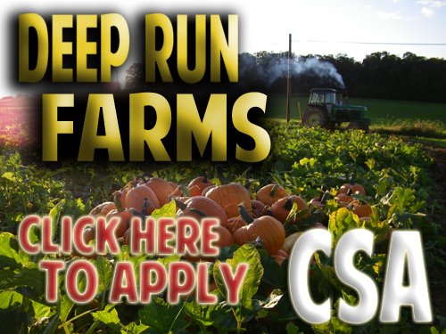 CSA Maryland, wholesale vegetable prices, community supported agriculture Maryland, baltimore csa, csa store, consumer supported agriculture