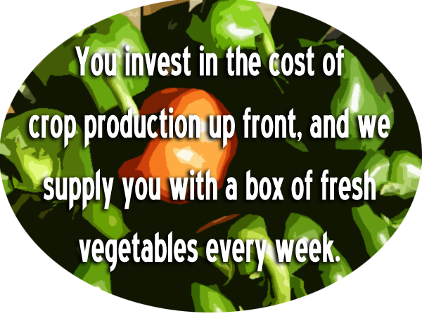 wholesale produce companies, greens produce, maryland agricultural