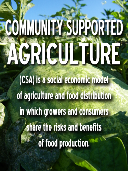 Sign up for a CSA Program in Maryland, Hampstead, Westminster, New Windsor, Taneytown, Frederick, Mt Airy