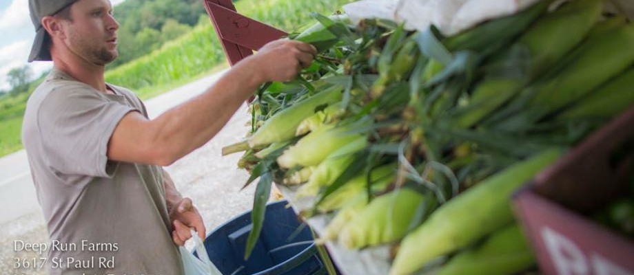 5 Reasons to Join a CSA Program in 2017